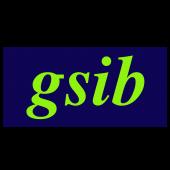 GSIB Logo